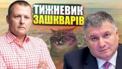 Photo of Стаття Путіна, Аваков пішов на відпочинок і блогер кіт Степан