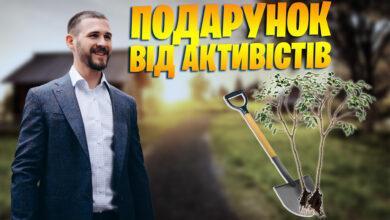 Photo of Активісти висадили дерева у селі Наливайківка